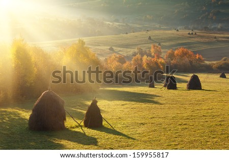 Haystacks on the autumn mountain meadow, rural landscape #159955817