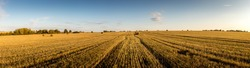 Haystacks on the field in autumn sunny day with clouhy sky. Rural landscape. Golden harvest of wheat in evening. Panorama.
