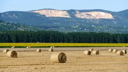 Haystacks on the Szentendre island in the middle of Danube river. Stone mines by Vac town in the background.