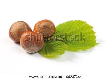 Hazelnut and leaf on white background. Shallow depth of field. - stock photo