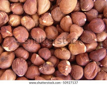 Hazelnuts - stock photo