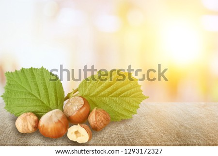 Hazelnuts Composition - Isolated
