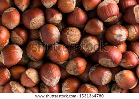 Hazelnuts. Stack of hazelnuts. Food background. Hazelnuts texture. Top view #1531364780
