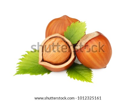 Hazelnuts with leaves isolated on the white background Foto d'archivio ©