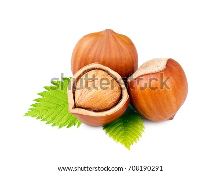 Hazelnuts with leaves isolated on white background Foto d'archivio ©