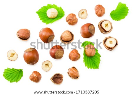 hazelnuts with leaves isolated on white background. top view Foto d'archivio ©