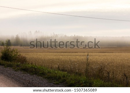 Hazy morning view over wheat field in Finland #1507365089
