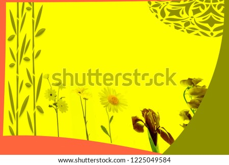 HD Yellow abstract background and wallpaper shutter stock, stock photo