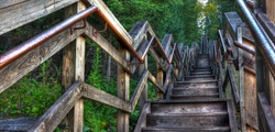 HDR of a long stairway through the forest.