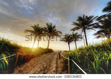 HDR of Path to Beach in Miami