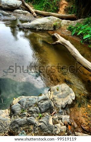 HDR photo of marsh - stock photo