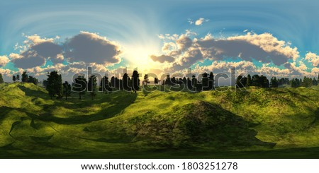 HDRI, environment map , Round panorama, spherical panorama, equidistant projection, panorama 360, Forest and swamp, 3d rendering