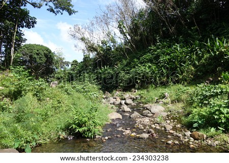 He\'eia Stream filled with large boulders, rocks, and surrounded by trees and plants on Oahu, Hawaii.