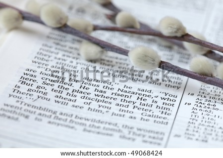 He has risen! - Open Bible with selective focus on the text in Mark 16:6 about Jesus\' resurrection. Shallow DOF