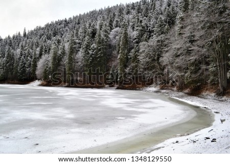 he mountain lake is covered with ice covered with snow-covered trees on the shore. #1348129550