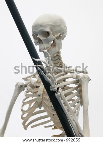 head and torso of grim Reaper with scythe in it's hand
