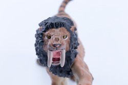 Head face Macro close up toy male Smilodon saber-toothed roaring and in attack position with white background