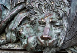 head of a bronze lion. bronze sculpture of a sleeping lion on the monument of glory in Poltava, Ukraine