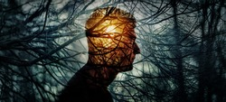 Head of a man on background of trees in forest. Concept on topic of psychology, psychiatry, depression. Branches of trees symbolise problems and diseases, and the sun is a symbol of hope and recovery.