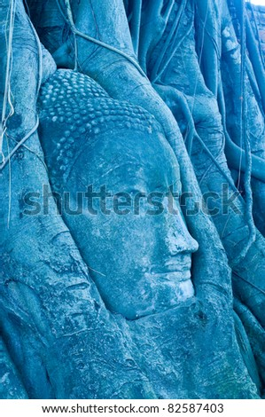 Head of buddha in root, Ayuthaya province, Thailand.