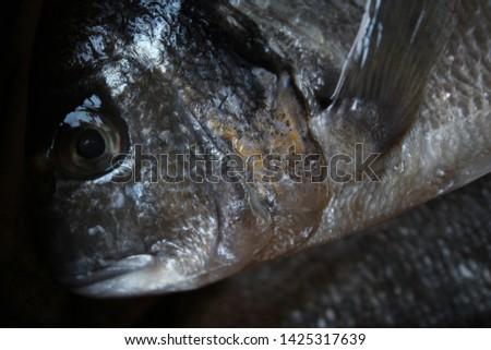 head of freshly caught sea bream #1425317639