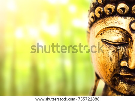 head of golden buddha statue on lush green background