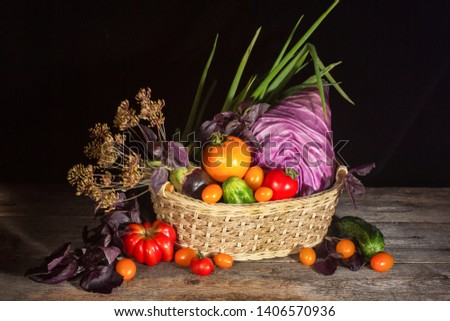 Head of red cabbage, eggplant,tomatoes, carrots, Basil-these vegetables are important in vegan And paleodiets. The concept of healthy, proper nutrition,. Diet, detox, cleansing