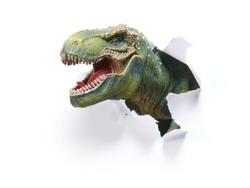 Head of the Dinosaur