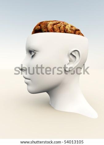 Head revealing a human brain inside.