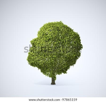 Head shaped tree
