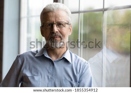 Head shot portrait mature grey haired man wearing glasses standing near window, senior grandfather in spectacles looking at camera, posing for photo at home, elderly generation concept