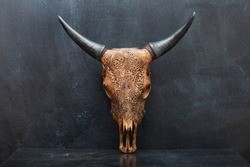 head skull of bull on the background  textured walls. upright