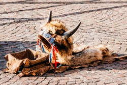 Headdress in american style with horns. Part of traditional costume lying on the ground with box for money. Street musician's headdress. Native American traditional Indian musician's hat