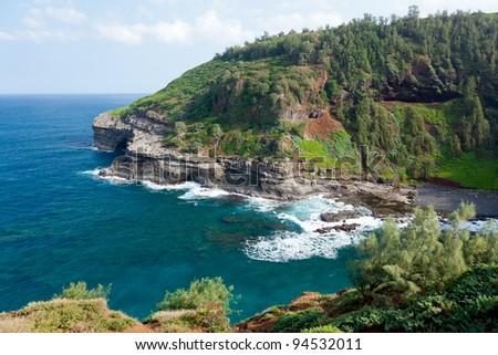 Headland near Kilauea Lighthouse as bird reserve
