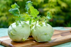 Heads of fresh ripe bio white cabbage kohlrabi from organic farm, close up