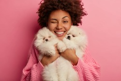 Headshot of funny curly haired woman smiles toothily, winks eye, carries two pedigree puppies closely to face, being pet lover, bought animals in pet store, dressed in knitted jumper, isolated on pink