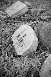 Headstones at a Pet Graveyard