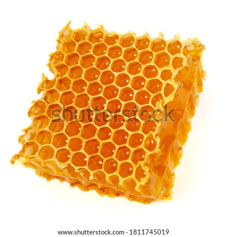 Healing wild honeycomb isolated on white background. Sweet natural and healthy delicacy. Propolis, beeswax and honey. Сток-фото ©