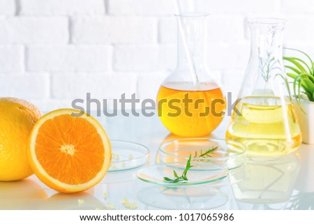 Health and Beauty background Citrus essential, research and sample natural organic concept in vitamin c , beauty care aroma therapy.