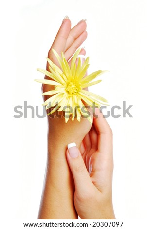 Health-care concept of human hands. Isolated on white background - stock photo