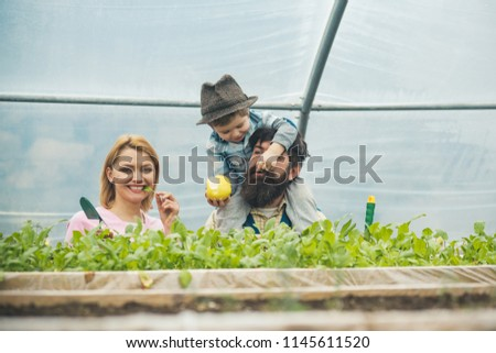 health care. health care of happy family. growing organic food for health care. health care concept. perfect gift for eny home #1145611520