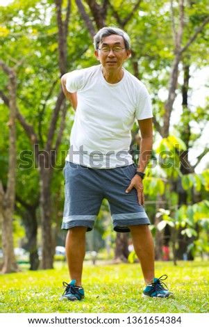 Health elderly concept Senior men have a backache in park
