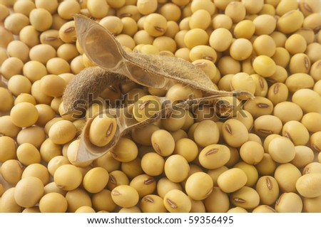 health food-soybean