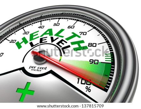 health level conceptual meter indicate hundred per cent, isolated on white background