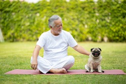 Healthy Asian Elderly man with white hairs doing exercise and playing with dog pug breed on green grass at park,Wellness Senior Recreation concept