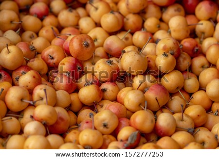healthy cranberry,red and yellow apple, flower,marigold,object Object]