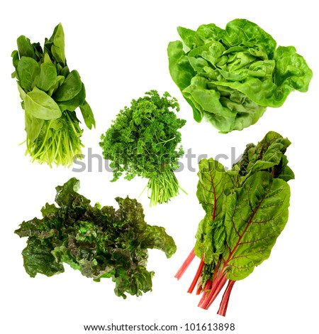 healthy dark green leafy vegetables,kale,spinach,parsley,boston lettuce,red tipped lettuce on a white background