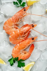 Healthy eating. Fresh tiger prawns on ice. Italian food concept