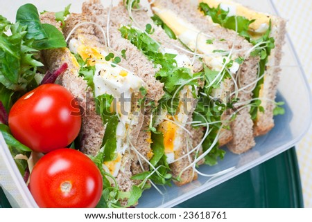 Healthy egg sandwich with salad and tomatoes