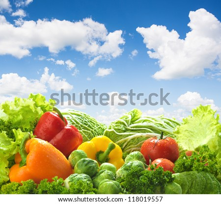 Healthy food landscape against blue sky. Mixed vegetables.